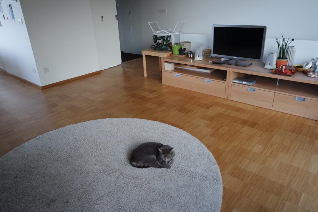 bamboe parket woonkamer met tapijt